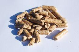 Какво е биомаса (част 1)