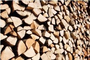Няколко неща, които всеки трябва да знае за дърводобива.